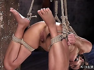 Hogtied and suspended indulge torturous